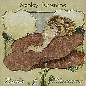 Buds & Blossoms