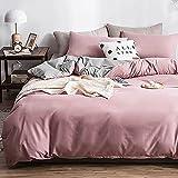 AShanlan Biancheria da letto 200 x 220 cm, colore rosa, grigio chiaro, double-face, 100% morbida e piacevole microfibra, tinta unita, copripiumino con chiusura lampo, 1 cm + 2 federe 80