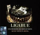 Sette notti in Arena von Ligabue