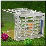 HTDHS Ant Farm Box Acrylic Farm Hors Castle Insecto Jaulas Fácil de Instalar para niños y Adultos Lleno de Divertido Nido de Hormigas (Color: Blanco, Tamaño: 16x14x12cm)
