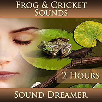 Frog and Cricket Sounds (2 Hours)