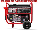 Photo #4: Propane Powered Generator by All Power America - Model APGG12000GL, 12000 Watt with Electric Start Gas/Propane