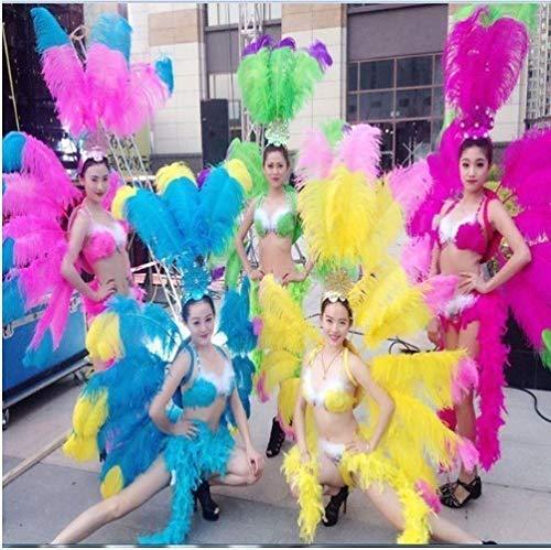 サンバ 衣装 羽 コスプレ ダンスショー シンガー カーニバル パーティー 祭り カラー選択可