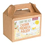 Deluxe Dairy Free Cheese Making Kit – 10 Batches! DIY Vegan Cheddar, Mozzarella, Ricotta – Dairy-Free, Paleo, Soy-Free, Gluten Free - Make Delicious Plant-Based Cheeses in Minutes - Woman-Owned Biz