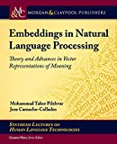 Embeddings in Natural Language Processing: Theory and Advances in Vector Representations of Meaning