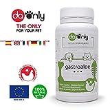 DAONLY Aloe Vera Tabletten für Hund & Katze, gesunde Verdauung für Haustiere, natürliche Hilfe...
