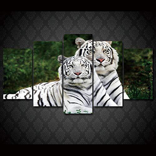 rkmaster-Hd-print White Tiger Fauna schilderij op canvas kamerdecoratie drukposter fotolijst/planken 032