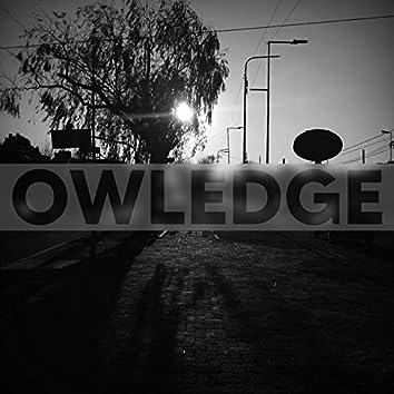 OWLEDGE