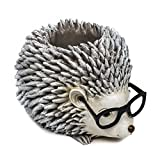 Roman Woodland Critters with Eye Glasses Novelty Planters (Hedgehog)