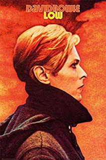 David Bowie - Music Poster (Low) (Size: 24 inches x 36 inches)