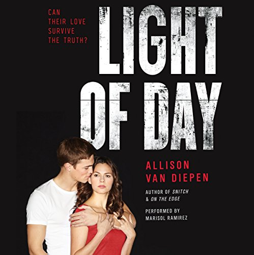 Light of Day audiobook cover art