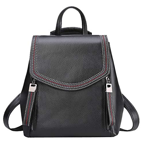 Heshe Women's Leather Backpack Casual Style Flap Backpacks Daypack for Ladies and Girls (Black)