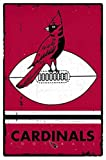 Arizona Cardinals - Retro Logo 15 Poster Drucken (55,88 x