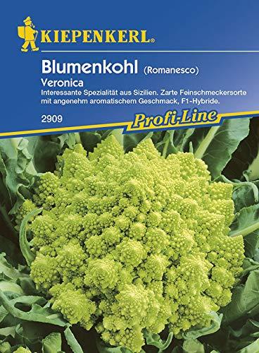 Kohlsamen - Blumenkohl Veronica F1 (Romanesco) von Kiepenkerl