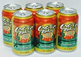 Cactus Cooler Orange Pineapple Soda - 12 Oz (6 - Pack)