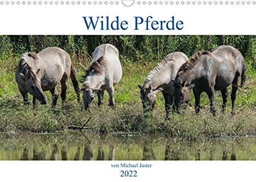 Wilde Pferde von Michael Jaster (Wandkalender 2022 DIN A3 quer)