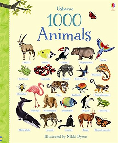 1000 animals - 2