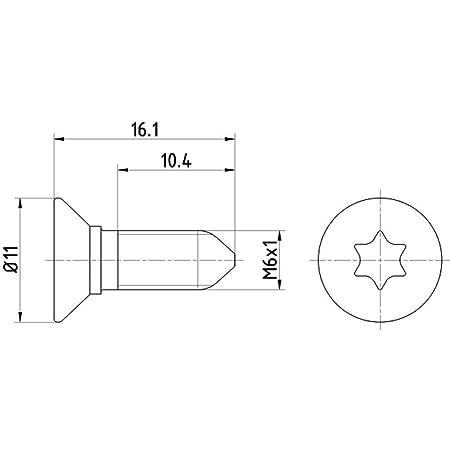 Hella Pagid 8dz 355 209 081 Schraube Bremsscheibe Hinterachse Oder Vorderachse Oberfläche Chrom Vi Freie Passivierung Set Aus 2 Bremsscheiben Auto