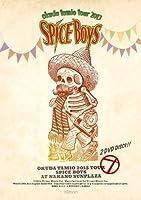 奥田民生2013ツアー SPICE BOYS at 中野サンプラザ [DVD]