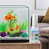 TKSTYLE Spray de Agente de eliminación de Algas de Limpieza de Estanque de Peces de 100 ml, Agente de eliminación Repelente de Algas removedor rápido de Musgo de pecera (1 Botella)