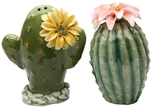 Painted Pair of Cactus Flowers Salt and Pepper Shakers