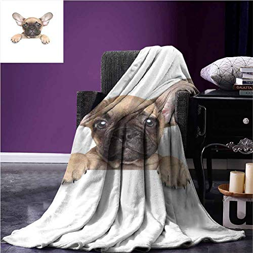 """Bulldog Throw Blanket Pedigreed Young Puppy Close up Photo Best Friend Pet Lover Print Mini Couch Blanket Twin(60"""" x 80"""") Sand Brown Black and White"""