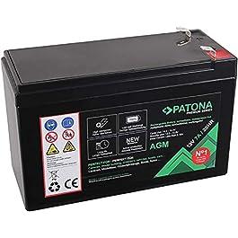 PATONA Premium AGM 6 V 7,2 Ah (également pour Batterie au Plomb 7,0 Ah) sans Entretien 1800 Cycles