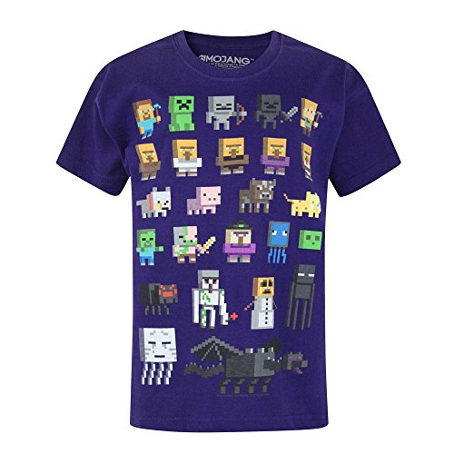 Noisy Sauce Official Minecraft Sprites Boy's T-Shirt (11-12 Years)