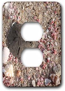 3dRose LSP 164781_ 6foto de dólar de arena y conchas, Playa En Omán, foto por Rhonda Albom 2Plug Outlet Cover
