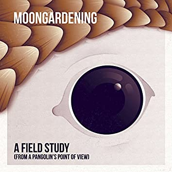 A Field Study (From a Pangolin's Point Of View)
