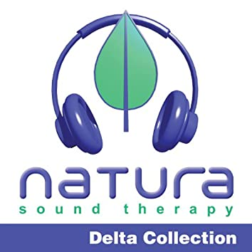Relaxing and Inspiring Sound Therapy Delta 1