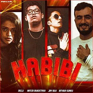 Habibi (feat. Hatem Mukattash, Jay Kila & Ritvika Sunku)