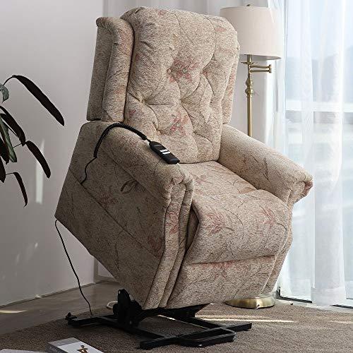 Irene House 9170 Dual OKIN Motor Power Lift Chair...