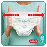 Pampers Baby-Dry Pants, Gr. 6, 15+ kg, Monatsbox, 1er Pack (1 x 116 Stück) - 6
