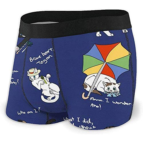 Herren 'S Boxer Brief Doctor Who Cats