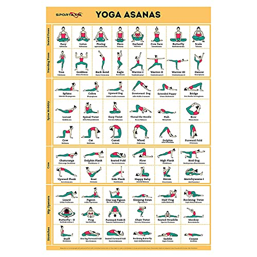 """Sportaxis Yoga Poses Poster- 64 Yoga Asanas for Full Body Workout- Laminated Home workout Poster with Colored Illustrations - English and Sanskrit Names - 18"""" x 27"""" (Double Sided)"""