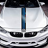 Carbon Fiber Car Hood Sticker M Performance Car Decals Decor for BMW E90 E46 E39 E60 F30 F10 F15 E53 X5 X6 (Blue)