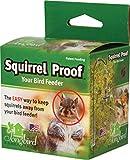 Songbird Essentials Squirrel Proof Spring 2