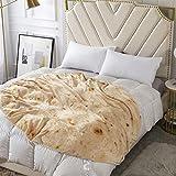 Amknn Burrito Manta gigante de harina tortilla manta novedad Burrito Tortilla manta para su familia suave y cómodo franela Taco manta para niños, Burrito-g, 119,38 cm