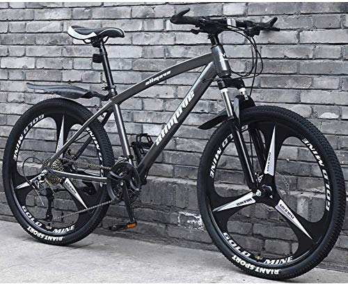 L&WB Biciclette in Mountain Bike, velocità Doppia Freno A Disco con velocità di Mountain Bike A velocità Variabile Telaio in Acciaio Carbone per Uomo E Donna,B,27speed
