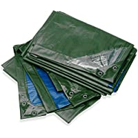 Bio Green Lona Rainexo RX250-3X4-GB, 3 x 4 m, 250 g/m², Incluye Ojales
