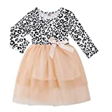 Infant Girls Leopard Dress Leopard Print Tulle Tutu Skirt Stitching Swing Frocks Baby Shower One-Piece Outfits Size 12-24 Months