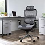 OFM 540 Ergo Office Chair featuring Mesh Back and Seat, Optional Headrest, Gray