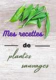 Mes recettes de plantes sauvages...