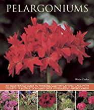 Pelargoniums: An Illustrated Guide to Varieties, Cultivation and Care, With Step-by-Step Instructions and Over 170 Beautiful Photographs