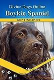 Boykin Spaniels (Divine Dogs Online Book 57)