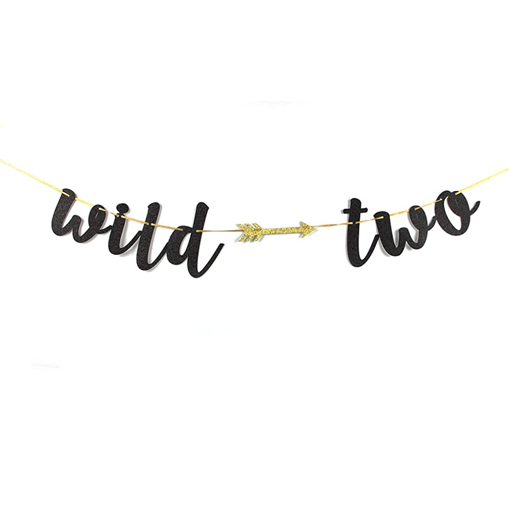 Karoo Jan Black Glitter Wild Two Banner with Arrow - Happy 2nd Birthday Party Decoration Bunting Photo Props,Baby Party Supplies