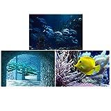 Lote de 3 pósteres 40 x 60 cm – Acuario peces océanos – Decoración póster