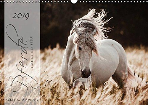 Pferde - Spiegel deiner Seele (Wandkalender 2019 DIN A3 quer): Lassen Sie sich entführen in die Faszinierende Welt der Pferde (Geburtstagskalender, 14 Seiten ) (CALVENDO Tiere)