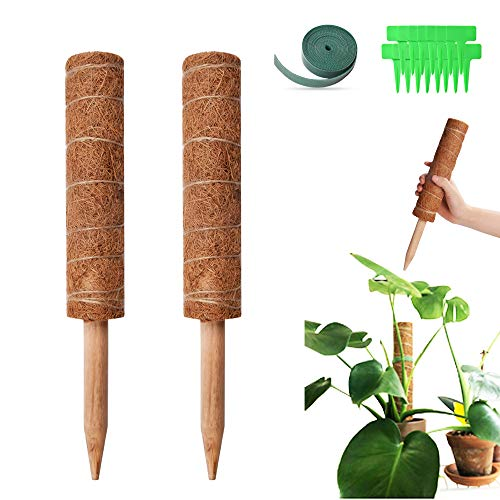 Esther Beauty Coir Moss Pole - 27 '' Coco Coir Poles with Gardening Tool Set and 98 Inches Garden Ties - 2 Natural Coir Moss Sticks for Climbing Plant Support Extension
